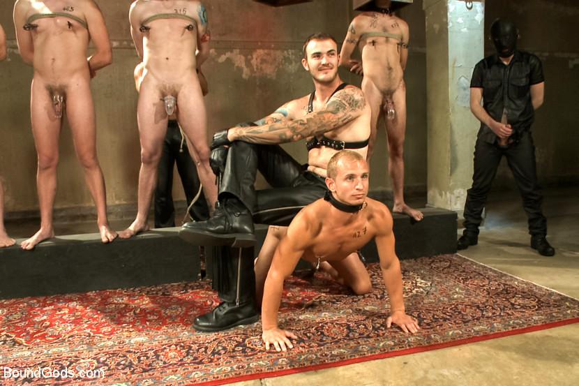 Naked guys as slaves 9