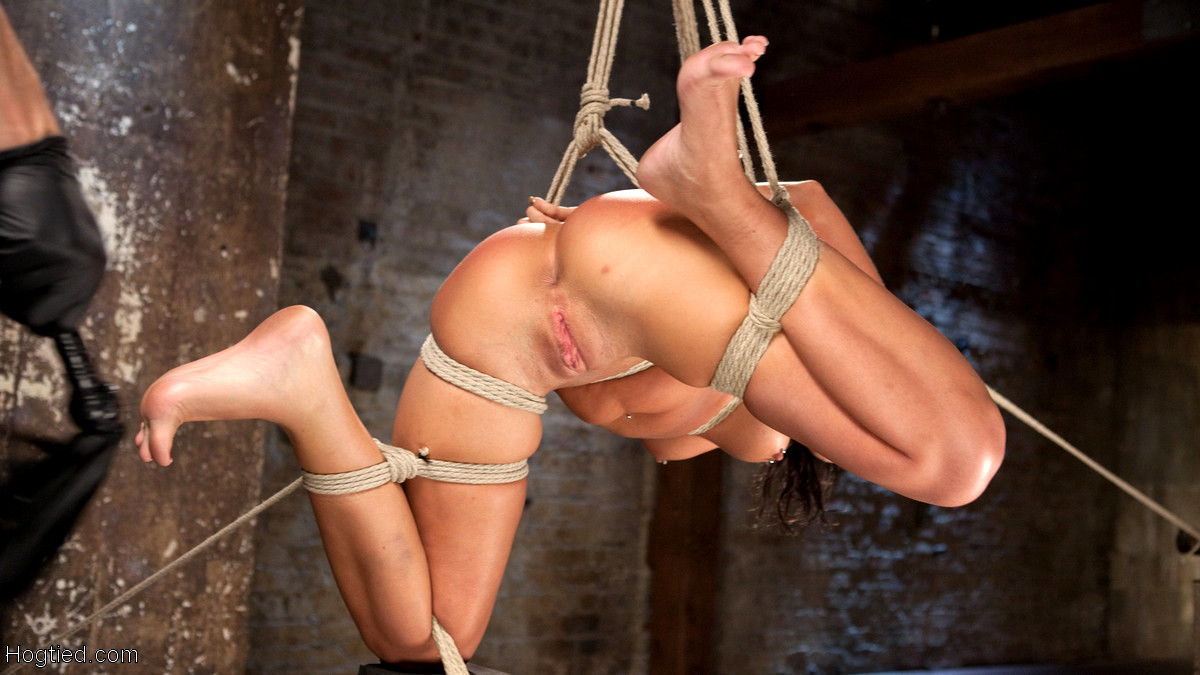 hogtied roxy raye