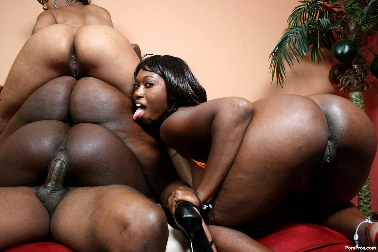 Black Bubble Butt Women Sex