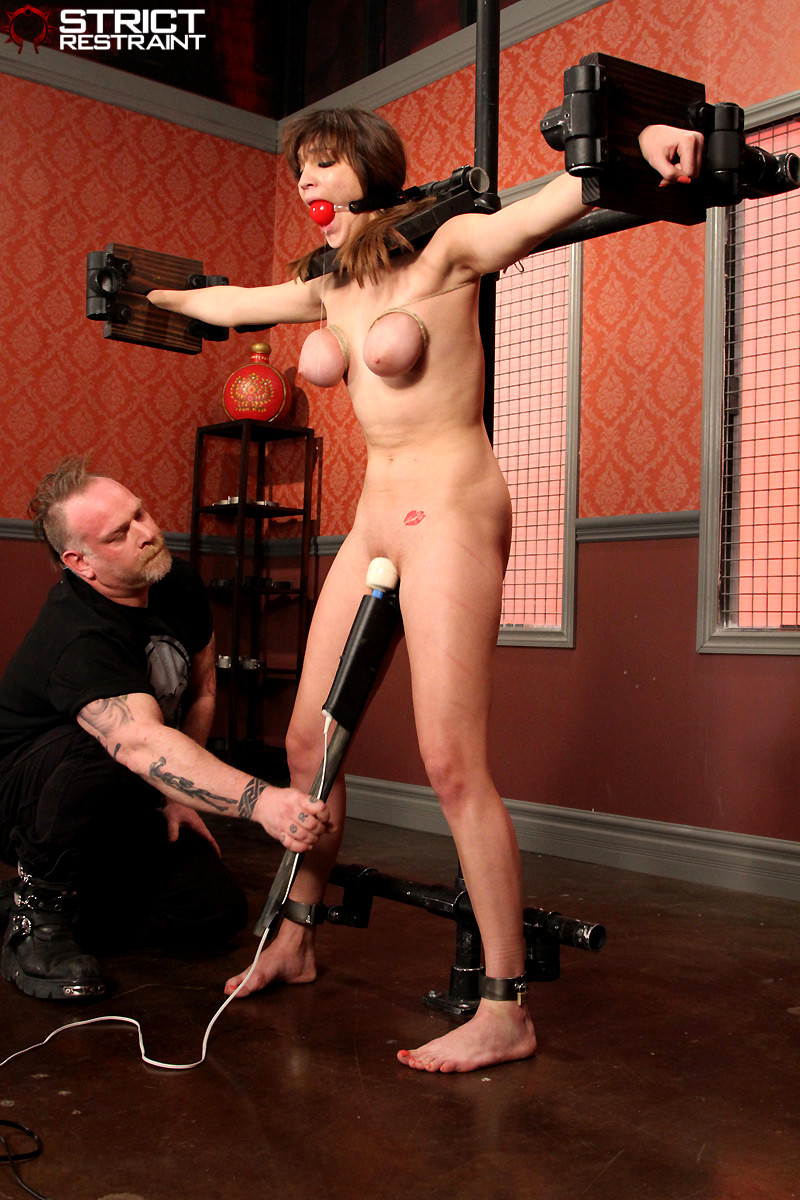 holly michaels bdsm