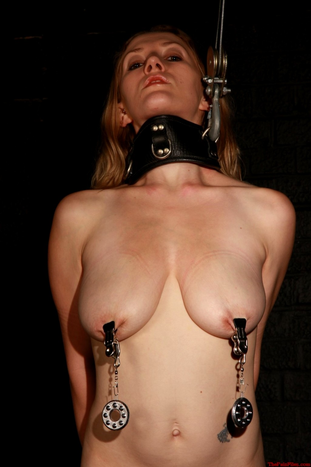 Stainless steel labia clip bondage, weighted ringed clover style nipple clamps with weights, adult toys
