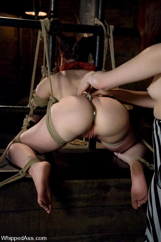 Bondage butt sex, fatty punjabi women fucking