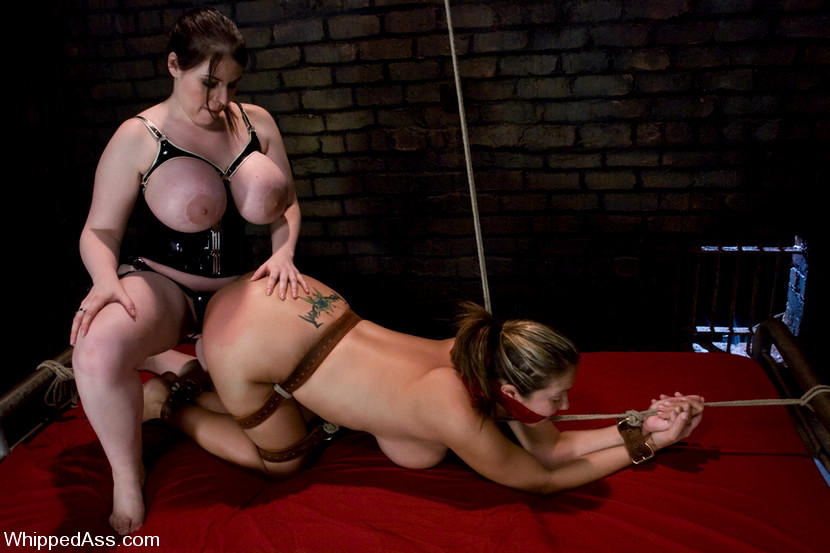 Whipped Ass Daphne Rosen Trina Michaels High Def Boobs -3619
